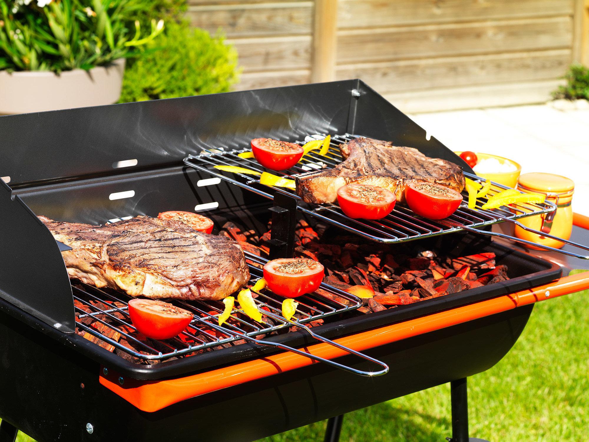 Barbecue A Gaz Ou Electrique barbecue / comparatif meilleur barbecue charbon & gaz